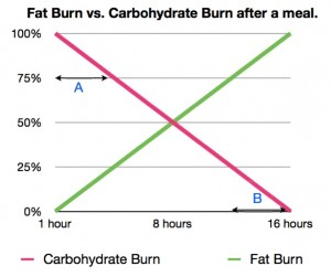fat-burn-graph-3